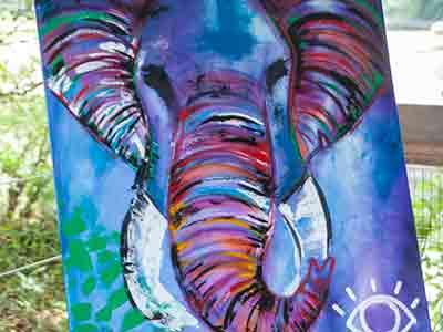 Macys Elephant Day
