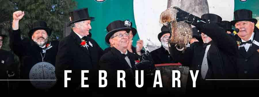 Social Animal Calendar February