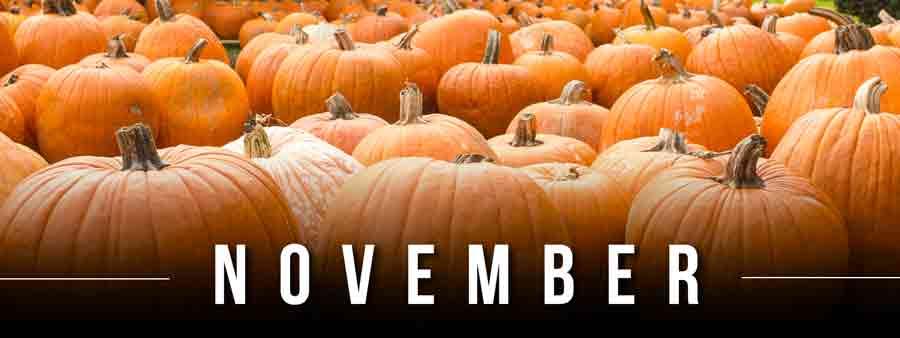 Social Calendar of Special Days November
