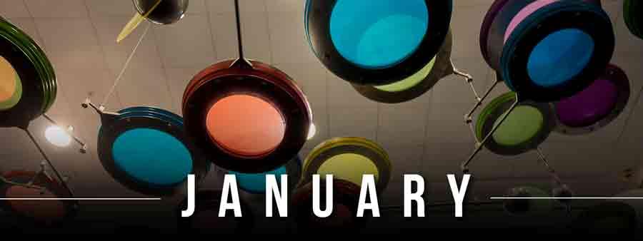Social Wellness & Awareness Calendar - January